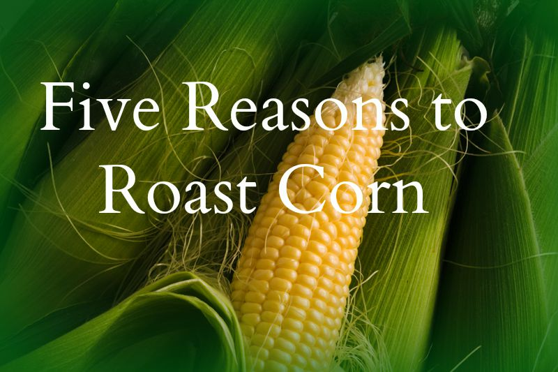 Roast Corn Meme
